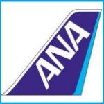 ANAマイルを貯めてタダで飛行機に乗る方法