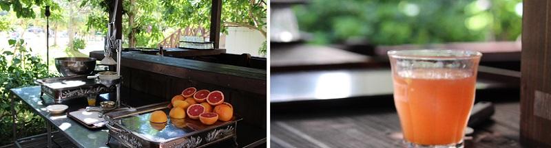 朝食セイルフィッシュカフェ