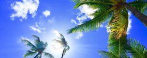 image-ハワイ2